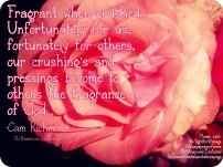 Fragrant When Crushed