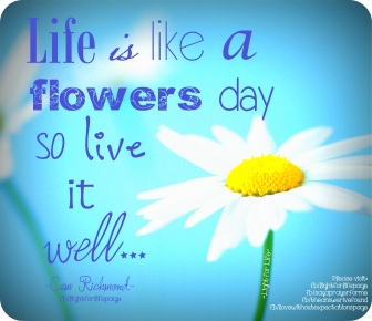LFL - life is like a flowers day