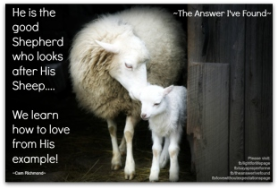 The One Who Looks After The one...